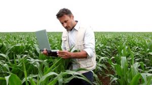 Agronomi specializzati in coltivazioni biologiche